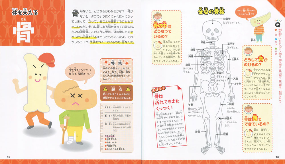 キャラクターでわかる人体 骨